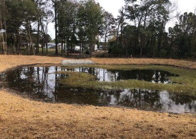 Storm Water & Wetland Ponds